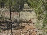 3265 Boone Trail - Photo 63