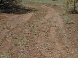 3265 Boone Trail - Photo 64