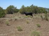 3265 Boone Trail - Photo 68