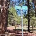 388 Benham Ranch Road - Photo 1