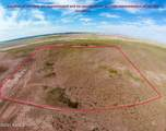 40 Acres Tract 427 Painted Desert Ranch - Photo 10