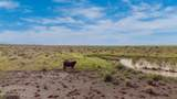40 Acres Tract 427 Painted Desert Ranch - Photo 13