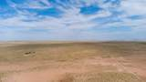 40 Acres Tract 427 Painted Desert Ranch - Photo 3