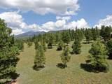 17g Lockett Ranches - Photo 1