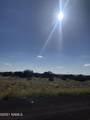 2752 Critter Pass Road - Photo 5
