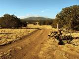 01 Sacred Mountain Ranch - Photo 34