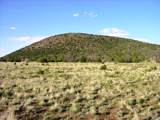 01 Sacred Mountain Ranch - Photo 40