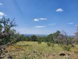 12748 Mesa View Road - Photo 13