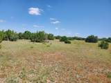 12748 Mesa View Road - Photo 19