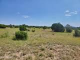 12748 Mesa View Road - Photo 21