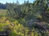12748 Mesa View Road - Photo 4