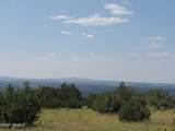 12748 Mesa View Road - Photo 10