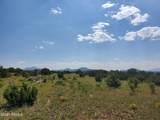 12748 Mesa View Road - Photo 11