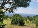 12748 Mesa View Road - Photo 6