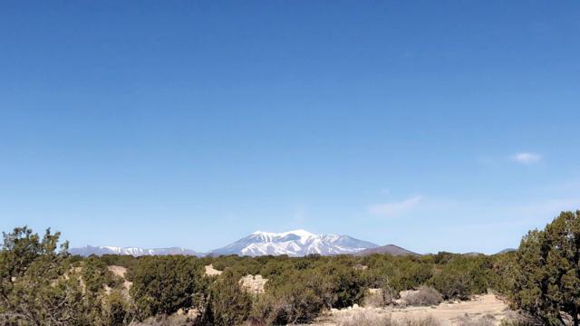 0 Indian Rural Rt, Flagstaff, AZ 86004 (MLS #177666) :: Keller Williams Arizona Living Realty