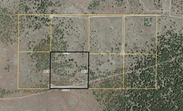 Lot 4 Red Cabin Ranch, Vernon, AZ 85940 (MLS #177842) :: Keller Williams Arizona Living Realty