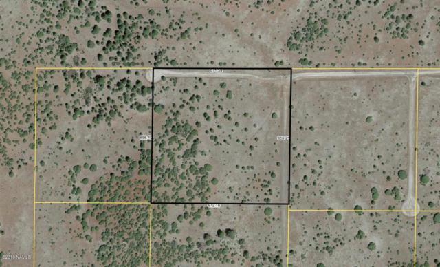Lot 3 Red Cabin Ranch, Vernon, AZ 85940 (MLS #177843) :: Keller Williams Arizona Living Realty