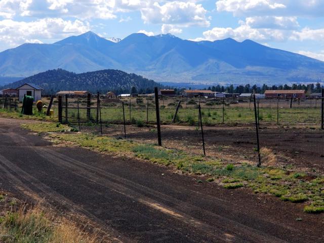 8326 Wolf Creek Drive, Flagstaff, AZ 86004 (MLS #177869) :: Keller Williams Arizona Living Realty