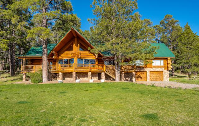 482 Lakeshore Drive, Mormon Lake, AZ 86038 (MLS #178016) :: Flagstaff Real Estate Professionals
