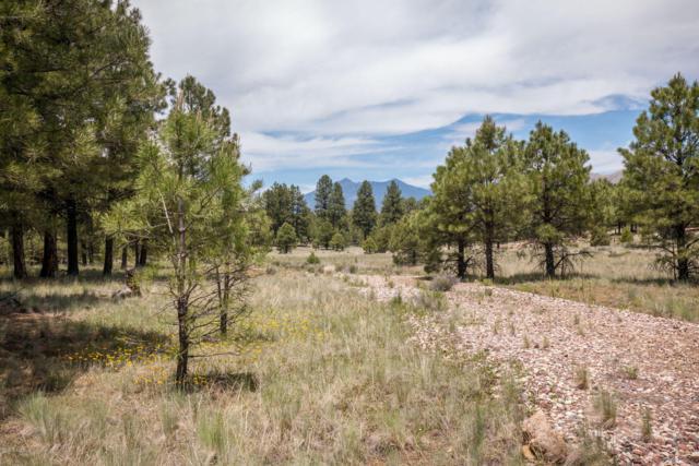 4750 E Monroe Street, Flagstaff, AZ 86001 (MLS #178105) :: Keller Williams Arizona Living Realty