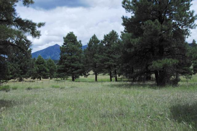 Tbd N San Francisco Street, Flagstaff, AZ 86001 (MLS #178788) :: Maison DeBlanc Real Estate