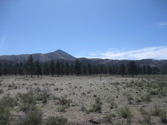 12585 N Forest Service 171 Road Road, Parks, AZ 86018 (MLS #179078) :: Flagstaff Real Estate Professionals