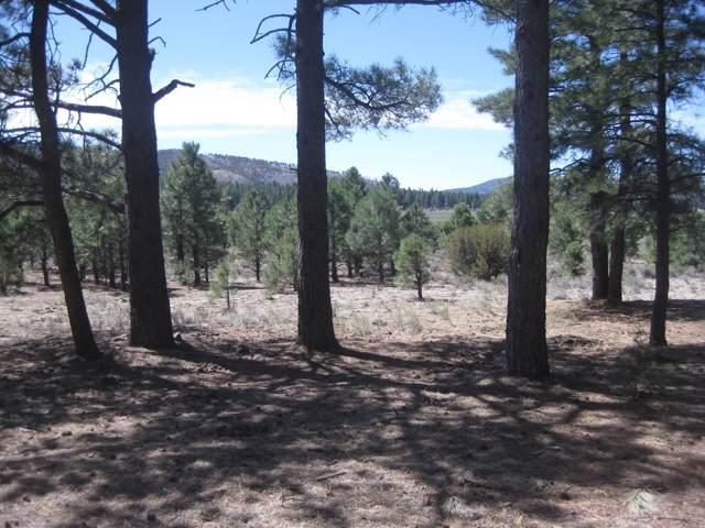 12463 N Forest Service 171 Road Road, Parks, AZ 86018 (MLS #179079) :: Flagstaff Real Estate Professionals