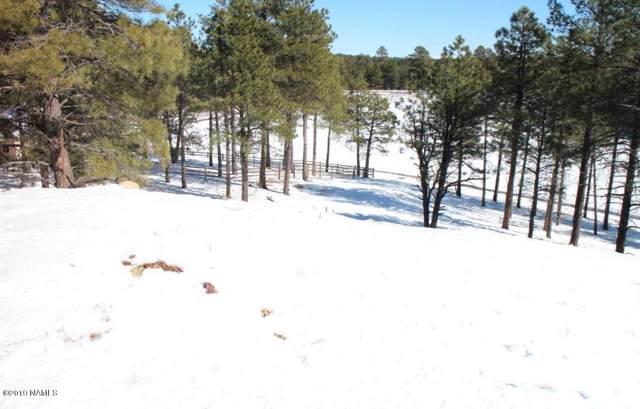 3959 S Marble Canyon Trail, Flagstaff, AZ 86005 (MLS #179584) :: Keller Williams Arizona Living Realty
