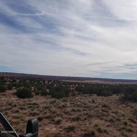 10 Route 2007 Lot 10, Chambers, AZ 86502 (MLS #180165) :: Keller Williams Arizona Living Realty