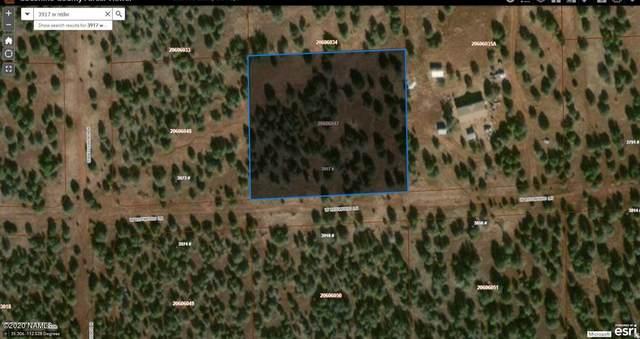 3917 W Redwood Lane, Williams, AZ 86046 (MLS #180272) :: Keller Williams Arizona Living Realty
