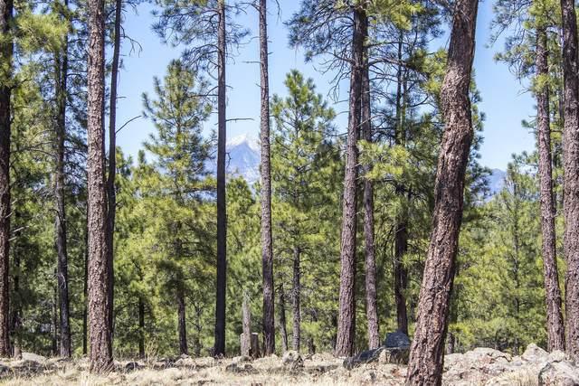 2832 Andrew Douglass, Flagstaff, AZ 86005 (MLS #180280) :: Keller Williams Arizona Living Realty