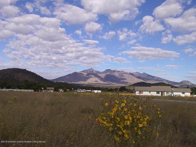8088 Talmage Trail, Flagstaff, AZ 86004 (MLS #180458) :: Keller Williams Arizona Living Realty