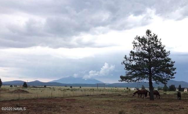 2797 S Peaks View Drive, Parks, AZ 86018 (MLS #180736) :: Flagstaff Real Estate Professionals
