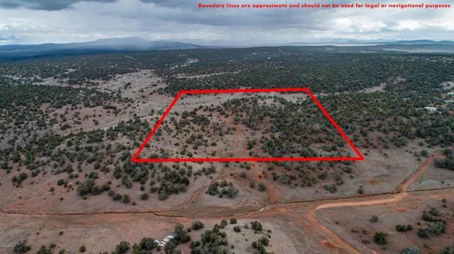 0000 Antelope Valley Ranches, Seligman, AZ 86337 (MLS #180828) :: Keller Williams Arizona Living Realty