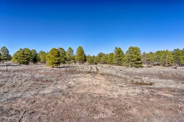 1150 W Route 66, Flagstaff, AZ 86015 (MLS #180918) :: Keller Williams Arizona Living Realty