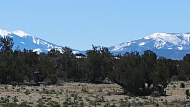 000 Avondale Road, Williams, AZ 86046 (MLS #181330) :: Keller Williams Arizona Living Realty