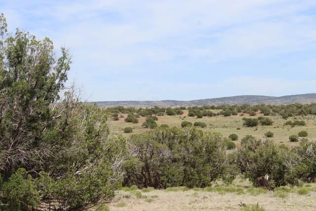 Lot 54 Rancho Alegre Unit 2, Concho, AZ 85924 (MLS #181378) :: Keller Williams Arizona Living Realty