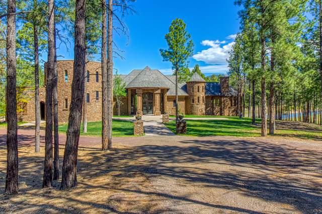 401 Sky View Street, Flagstaff, AZ 86004 (MLS #181445) :: Keller Williams Arizona Living Realty