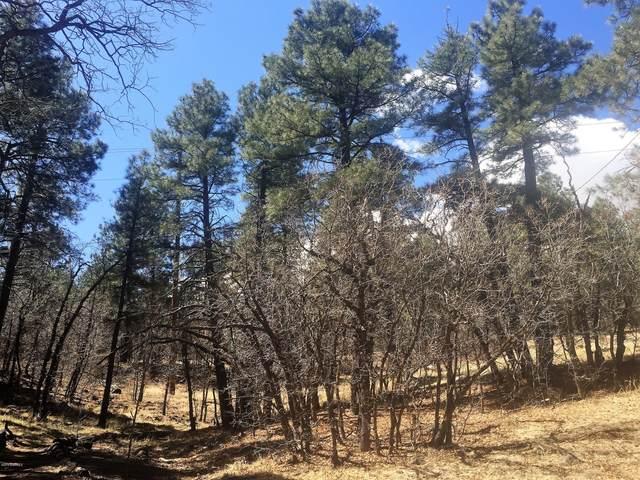 1633 E Mountain View Avenue, Flagstaff, AZ 86004 (MLS #181630) :: Keller Williams Arizona Living Realty
