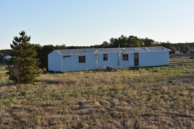 13100 Townsend Winona Road Tbd, Flagstaff, AZ 86004 (MLS #181830) :: Keller Williams Arizona Living Realty