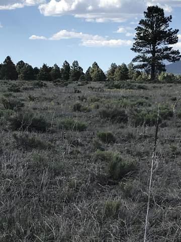10981 E Horse Hill Trail, Parks, AZ 86018 (MLS #181869) :: Keller Williams Arizona Living Realty