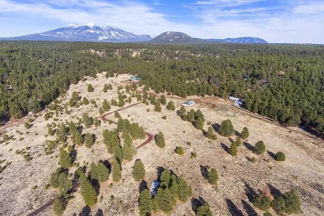 11520 W Beatons East, Flagstaff, AZ 86015 (MLS #182190) :: Keller Williams Arizona Living Realty