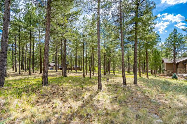 2548 E Del Rae Drive, Flagstaff, AZ 86005 (MLS #182311) :: Keller Williams Arizona Living Realty