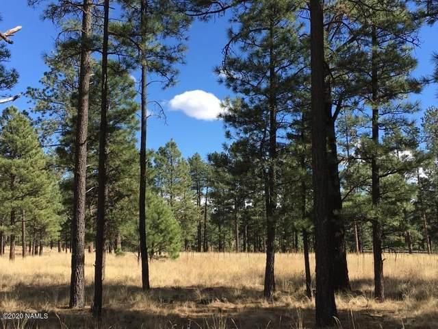Parcel 103-07-009M, Greer, AZ 85927 (MLS #182321) :: Keller Williams Arizona Living Realty