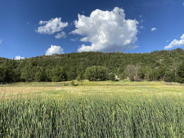 78-A Lakeview Court, Stoneman Lake, AZ 86038 (MLS #182380) :: Keller Williams Arizona Living Realty