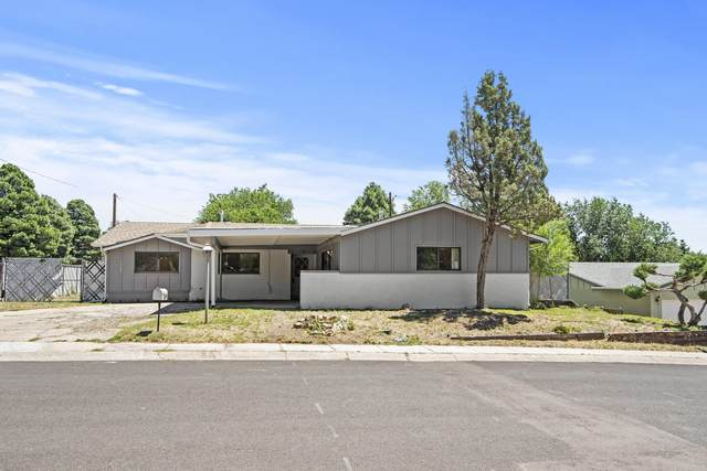 3564 Walker Street, Flagstaff, AZ 86004 (MLS #182705) :: Keller Williams Arizona Living Realty