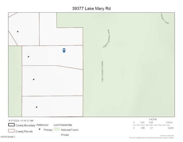 39377 Lake Mary Road, Happy Jack, AZ 86024 (MLS #182767) :: Keller Williams Arizona Living Realty