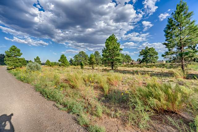 5830 Provided Way, Flagstaff, AZ 86004 (MLS #182878) :: Keller Williams Arizona Living Realty