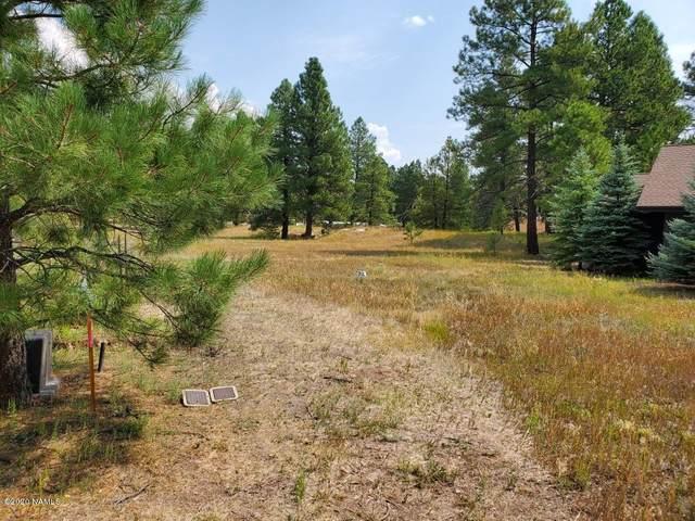 2347 Kayenta Lane, Flagstaff, AZ 86001 (MLS #182906) :: Keller Williams Arizona Living Realty