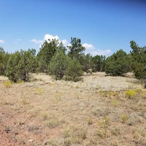 1333 W Moonglow Drive, Ash Fork, AZ 86320 (MLS #182926) :: Maison DeBlanc Real Estate